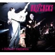 BUZZCOCKS「A Different Compilation」